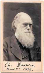 Darwin150x250