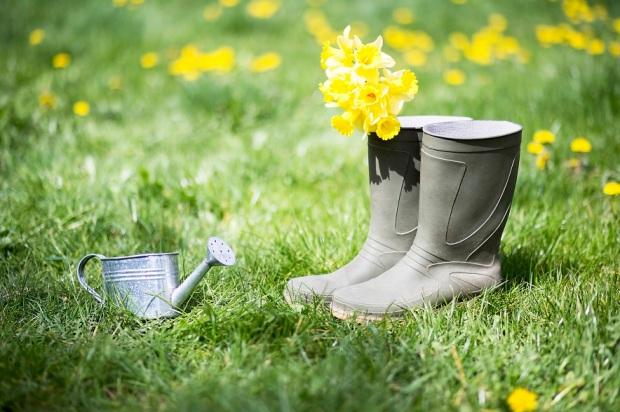 summer-gardening-concept-rid.jpg