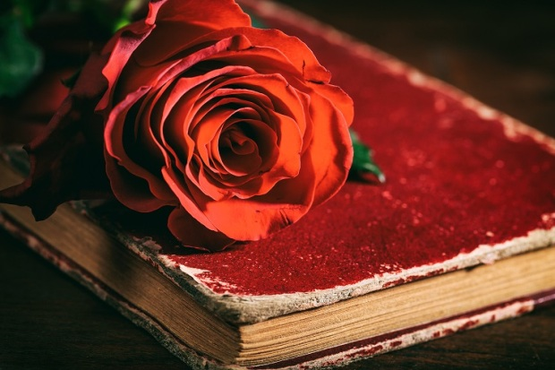 red-rose-on-a-vintage-book-on-dark-background-PESE2HZ.jpg